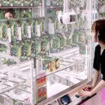 鬼滅の刃、アニメ系縛りで1万円クレーンゲームチャレンジwで奇跡が…!!