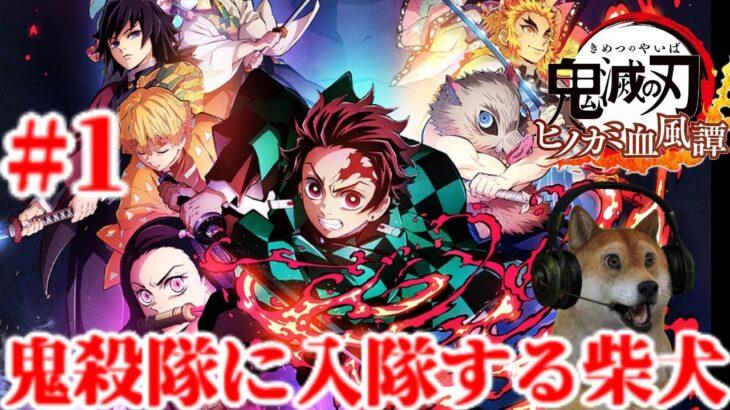 #1 鬼滅の刃 ヒノカミ血風譚 ストーリーを追体験していく!【ネタバレ注意!】